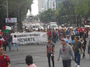 Manifestacion propalestina Mexico 1055