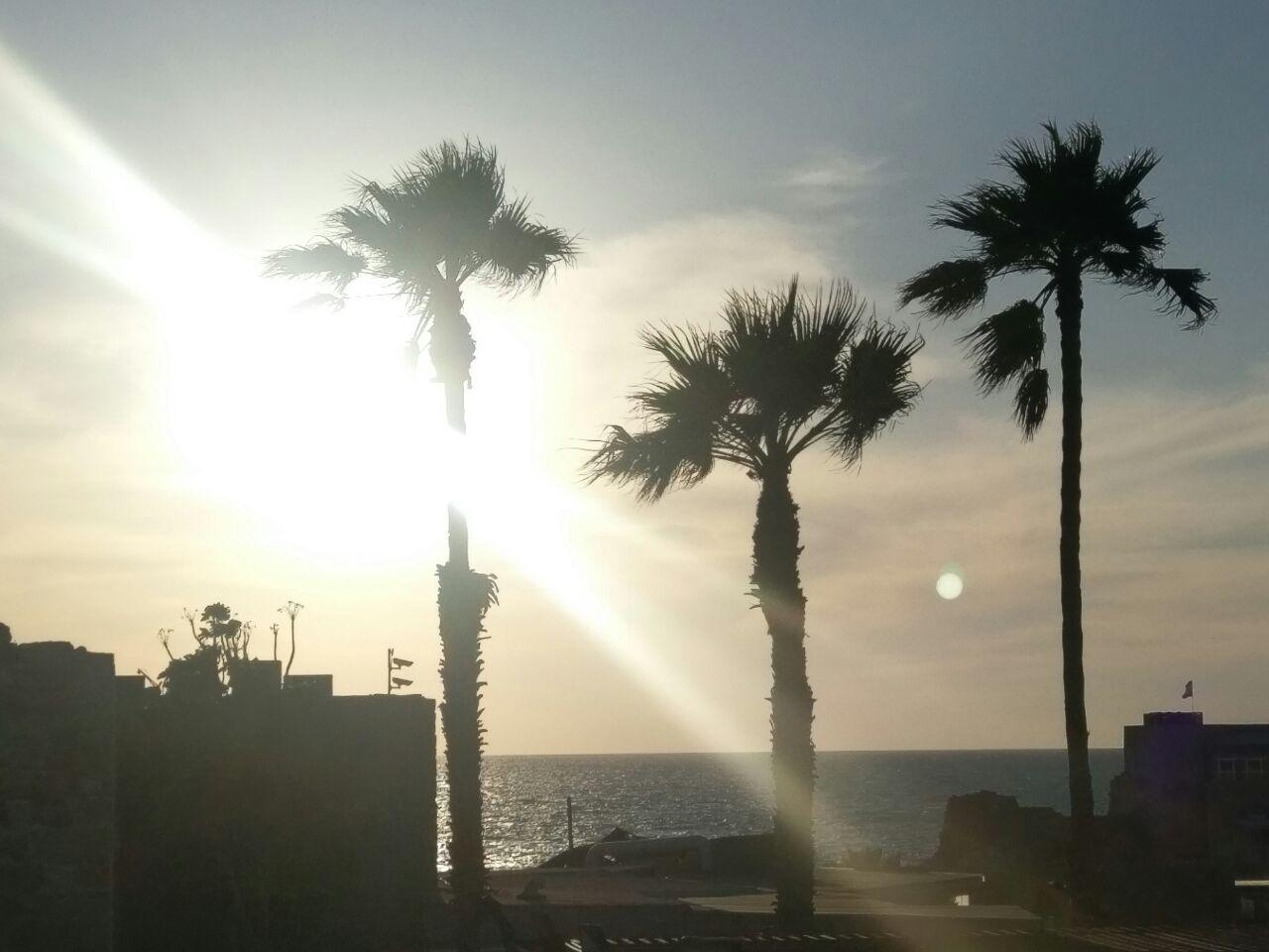 Foto del día. Esta desde Israel